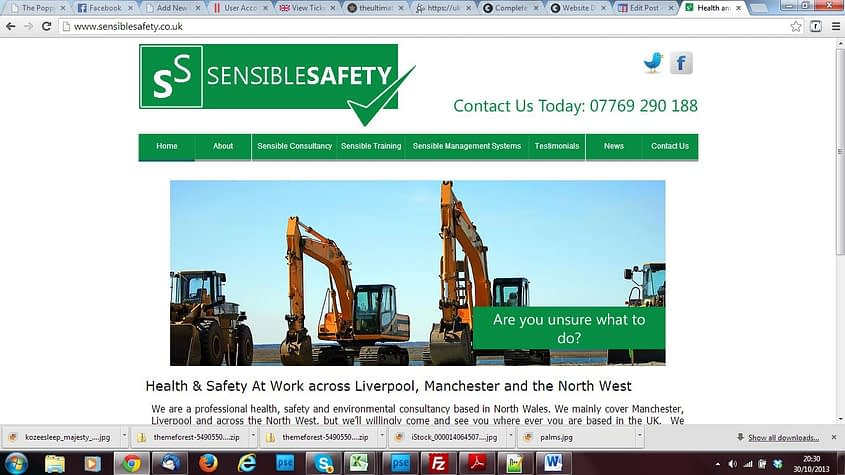sensible safety woodlouse fireplaces logo design, SEO and website services by Complete Marketing Solutions, North Devon